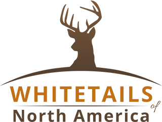 Whitetails of North America